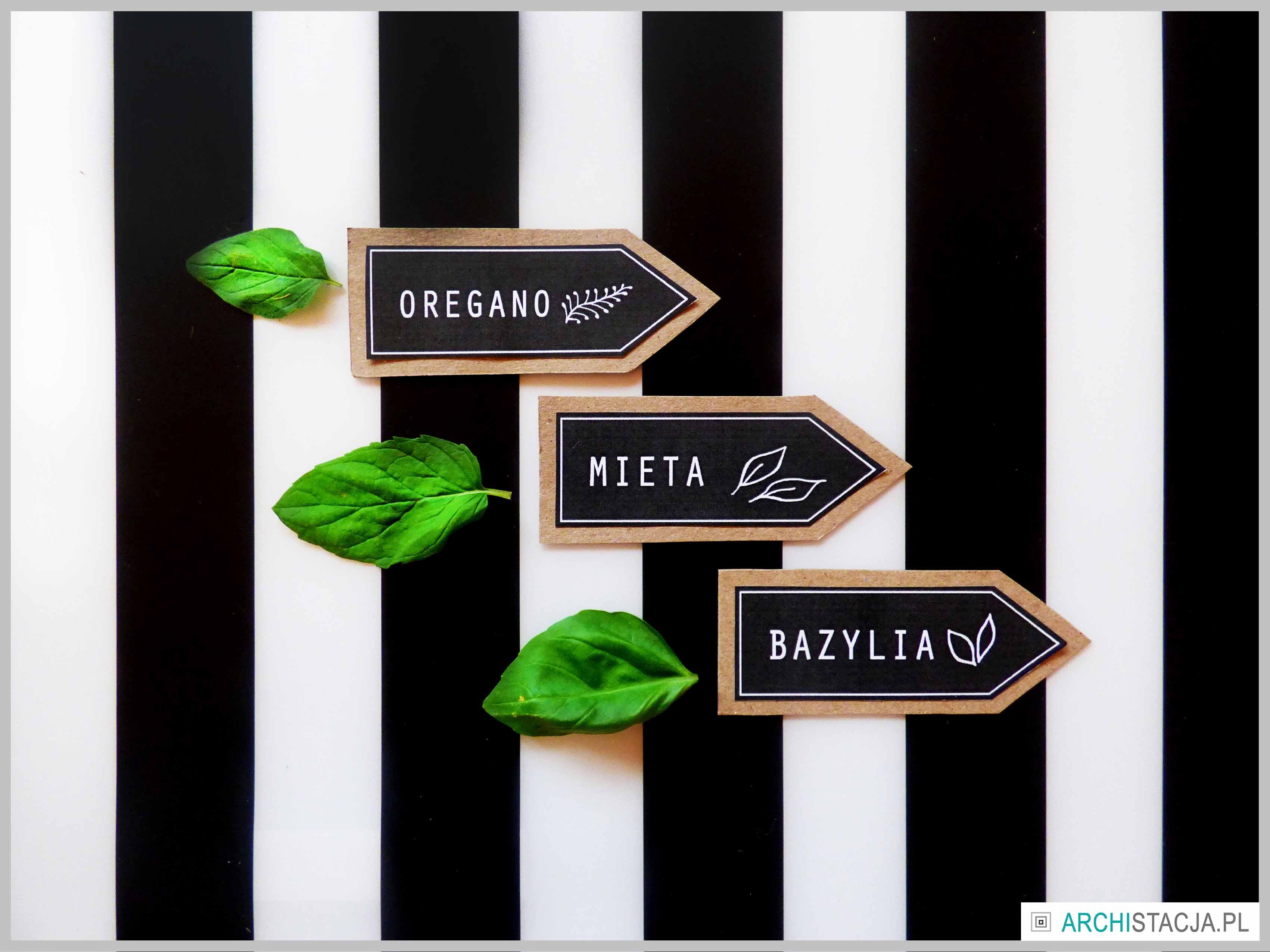 DIY WE WNĘTRZU – domowy ziołowy ogródek