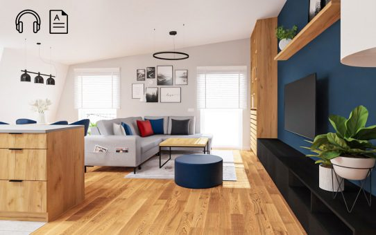 Jak urządzić nowoczesne mieszkanie? Projekt PROSTOTA Z AKCENTEM (tekst+audio)
